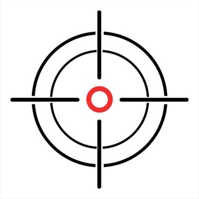 Laser Target System